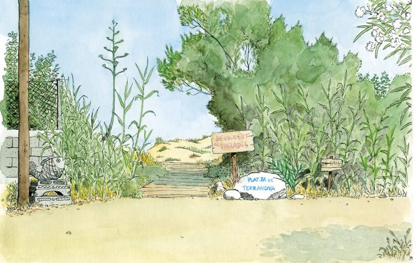 Lámina para enmarcar con una ilustración en acuarela de una pasarela de la playa de terranova en el municipio de Oliva, Valencia.