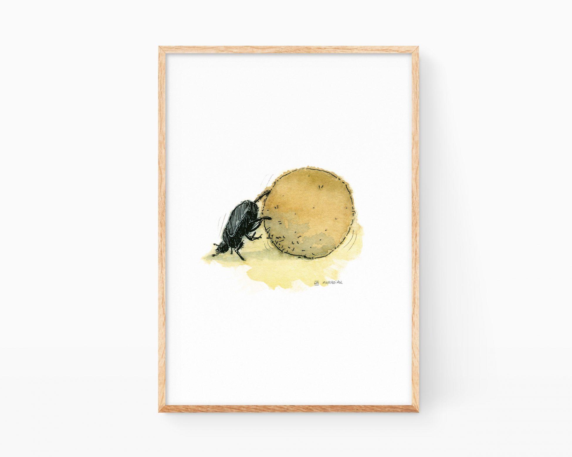 Cuadro con una ilustración de un escarabat piloter típico de las dunas de playa de Valencia y La Safor.